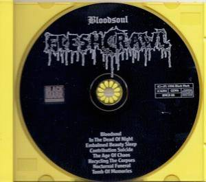 Fleshcrawl: Bloodsoul (CD) - Bild 2