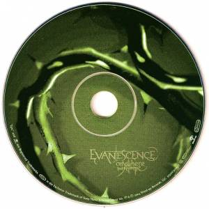 Evanescence: Anywhere But Home (CD + DVD) - Bild 5