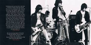 Ramones: Greatest Hits (CD) - Bild 5