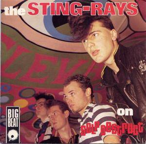 Cover - Sting-Rays, The: On Self Destruct