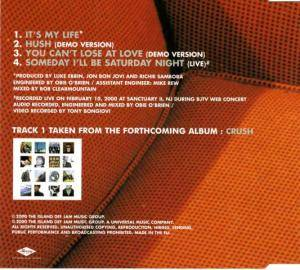 Bon Jovi: It's My Life (Single-CD) - Bild 2