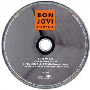 Bon Jovi: It's My Life (Single-CD) - Bild 3