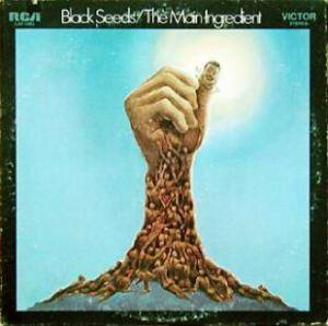 Cover - Main Ingredient, The: Black Seeds