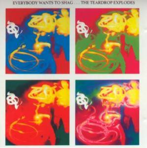Cover - Teardrop Explodes, The: Everybody Wants To Shag... The Teardrop Explodes