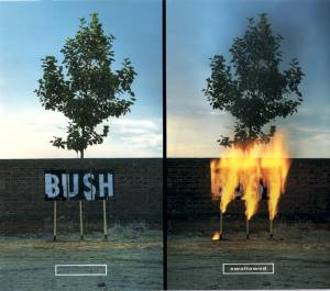 Bush: Swallowed - Cover