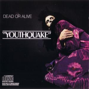 Dead Or Alive: Youthquake - Cover