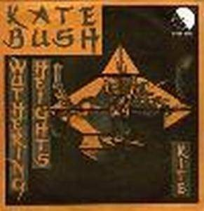 Kate Bush: Wuthering Heights - Cover