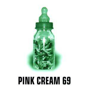 Cover - Pink Cream 69: Food For Thought
