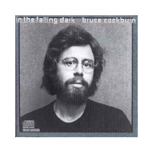 Cover - Bruce Cockburn: In The Falling Dark