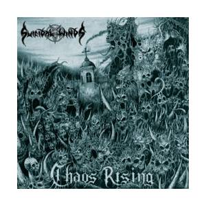Cover - Suicidal Winds: Chaos Rising