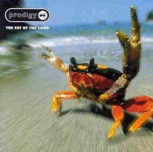 The Prodigy: The Fat Of The Land (CD) - Bild 1