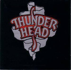 Cover - Thunderhead: Busted At The Border