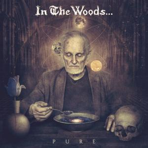 In The Woods...: Pure - Cover