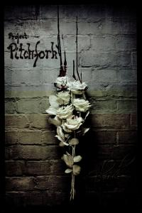 Project Pitchfork: Blood - Cover
