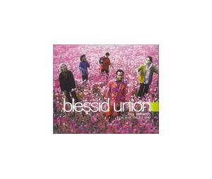 Cover - Blessid Union Of Souls: Hey Leonardo (She Likes Me For Me)