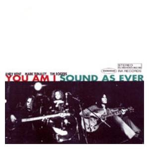 Cover - You Am I: Sound As Ever