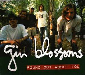 Cover - Gin Blossoms: Found Out About You