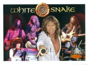 Whitesnake: Good To Be Bad (2-CD) - Bild 5