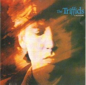 Cover - Triffids, The: Calenture