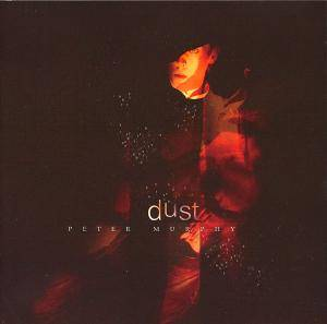 Cover - Peter Murphy: Dust