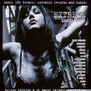 Cover - Am Inc.: Extreme Lustlieder 1