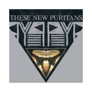 These New Puritans: Beat Pyramid - Cover