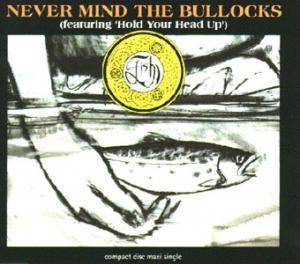 Fish: Never Mind The Bullocks - Cover