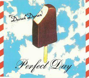 Duran Duran: Perfect Day - Cover