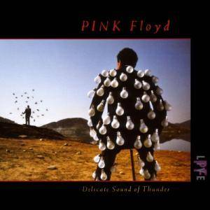 Pink Floyd: Delicate Sound Of Thunder (2-CD) - Bild 1