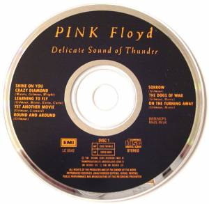 Pink Floyd: Delicate Sound Of Thunder (2-CD) - Bild 3