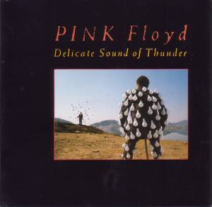 Pink Floyd: Delicate Sound Of Thunder (2-CD) - Bild 5