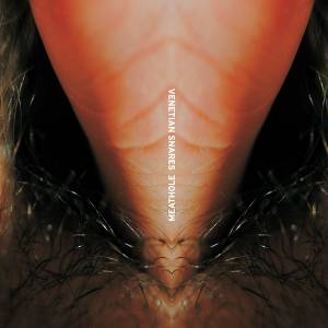 Cover - Venetian Snares: Meathole