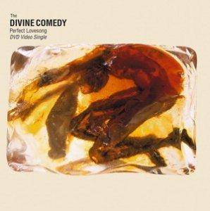 The Divine Comedy: Perfect Lovesong - Cover