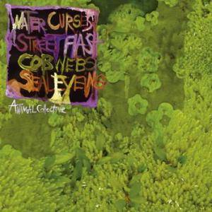 Animal Collective: Water Curses - Cover