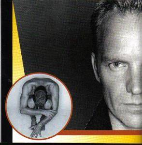 Sting: Fields Of Gold - The Best Of Sting 1984-1994 (CD) - Bild 6