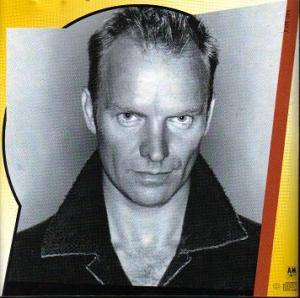 Sting: Fields Of Gold - The Best Of Sting 1984-1994 (CD) - Bild 7