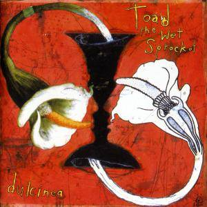 Cover - Toad The Wet Sprocket: Dulcinea