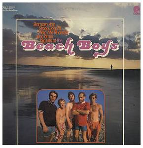 The Beach Boys: Beach Boys - Cover
