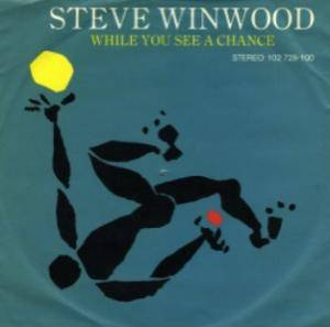 Cover - Steve Winwood: While You See A Chance