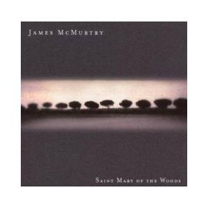 Cover - James McMurtry: Saint Mary Of The Woods