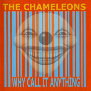 Cover - Chameleons, The: Why Call It Anything
