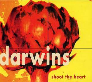 Cover - Darwins: Shoot The Heart