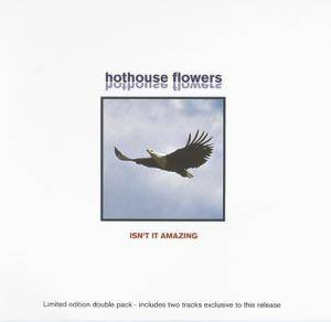 Hothouse Flowers: Isn't It Amazing - Cover