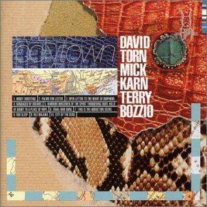 Cover - David Torn, Mick Karn, Terry Bozzio: Polytown
