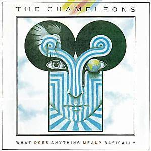 The Chameleons: What Does Anything Mean? Basically - Cover
