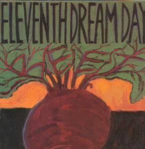 Cover - Eleventh Dream Day: Beet