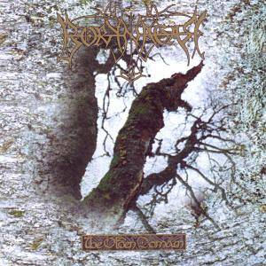 Borknagar: The Olden Domain (CD) - Bild 1