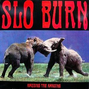 Slo Burn: Amusing The Amazing - Cover