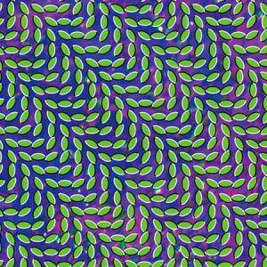 Animal Collective: Merriweather Post Pavilion - Cover