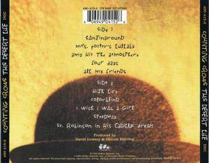 Counting Crows: This Desert Life (CD) - Bild 3
